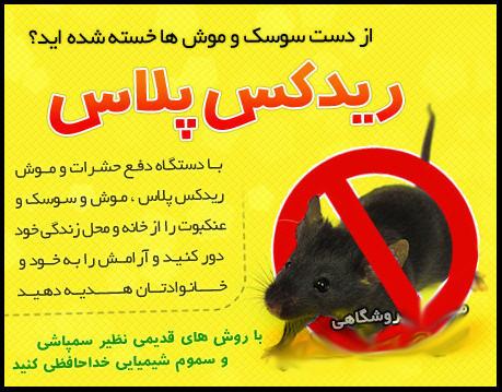 http://www.harajiha.ir/pic/uploads/1469930179.jpg