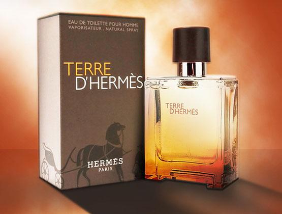 ادکلن مردانه تق هرمس پرفیوم Terre D-Hermes طرح اصلی